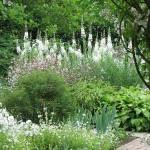 красивое оформление белого сада