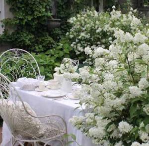красивый дизайн белого сада