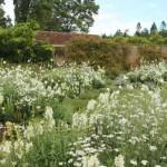 белый сад в природном стиле