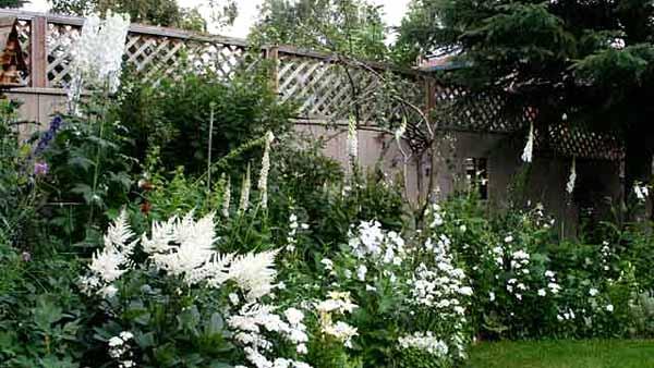 белые цветы в ландшафтном дизайне сада