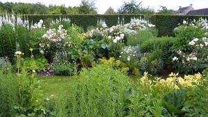 белый цвет в ландшафтном дизайне сада