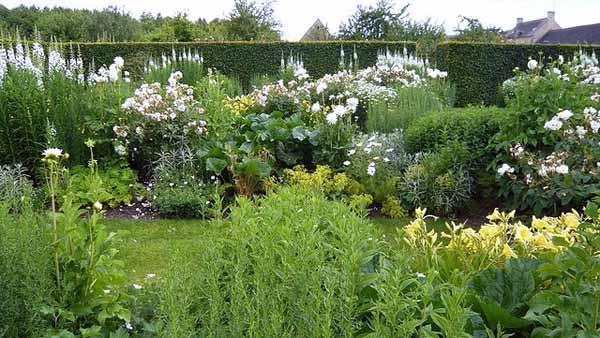 белый цвет в оформлении садового участка