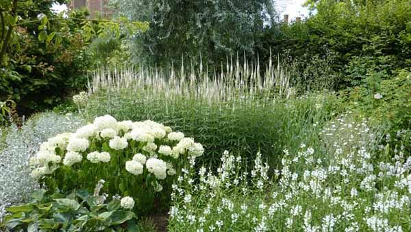 необычный ландшафтный дизайн лунного белого сада