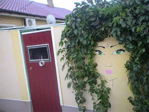 забор с цветами