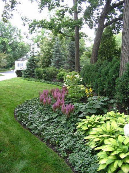 красивый дизайн сада своими руками-елочки