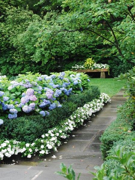 красивый дизайн сада своими руками-любимое место