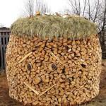 дрова на даче дровница