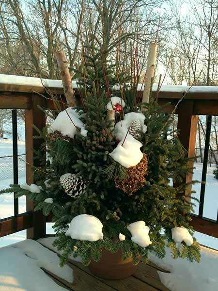 Декор новогоднего дачного двора еловыми ветками