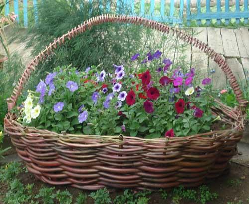Ваши цветы и как красиво с ними
