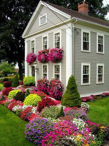 красивый миксбордер на даче из ярких цветов