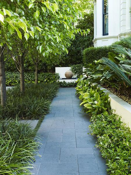 красивый миксбордер на даче - декоративные растения