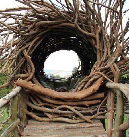 необычно беседка в виде гнезда
