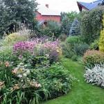 как подобрать цветы для клумбы на даче