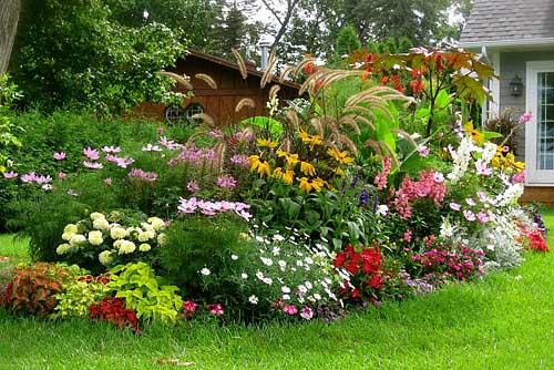 Создание цветников. Золотое правило цветочной клумбы