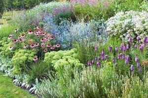 Красивые сады своими руками фото