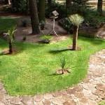 дорожки из спилов дерева в ландшафтногм дизайне