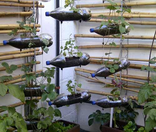 вертикальный сад из старых пластиковых бутылок своими руками на даче
