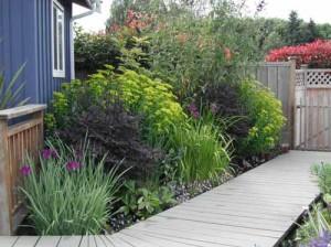 как сделать красивый цветник около дома