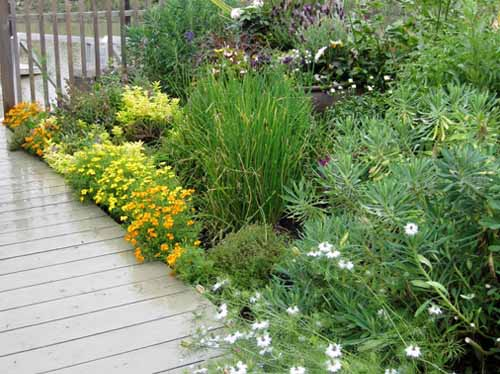 как сделать красивую дорожку в саду