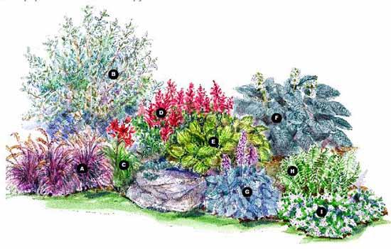 надеемся схемы цветников
