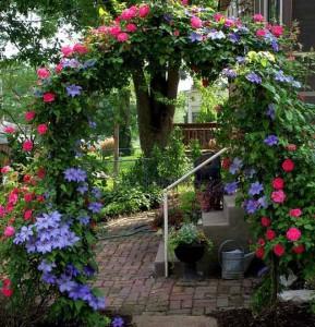 арка из цветов и роз в саду