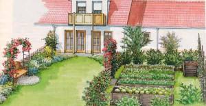 схема расположения высоких грядок на садовом участке