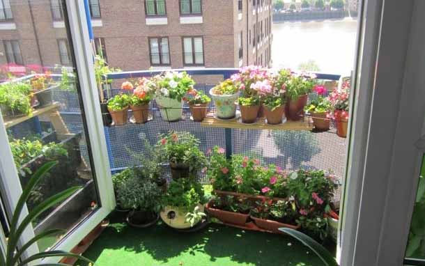 маленький балкон с цветами