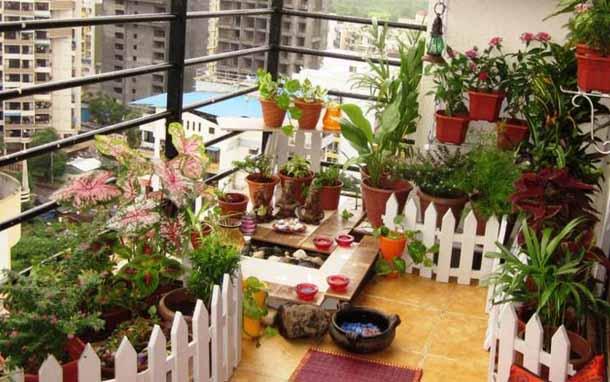 как красиво разместить комнатные цветы на балконе