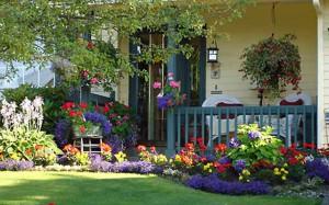 цветник возле дома