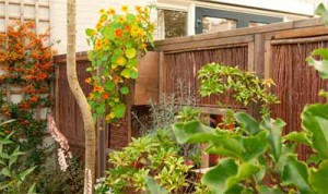 забор в частном доме