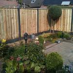 дачный забор фото
