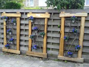 забор для дачи фото