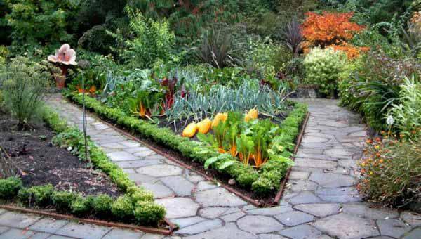 дизайн огорода