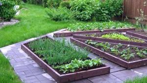 красивый огород дизайн