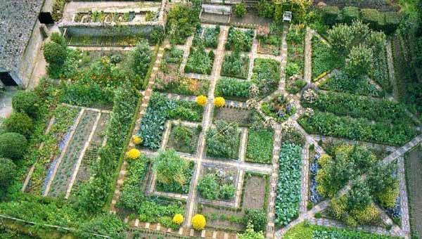как сделать красивый дизайн огорода