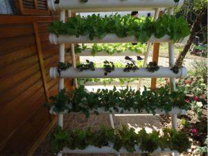 вертикальное озеленение конструкции из пвх труб