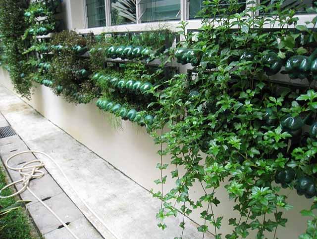 вертикальное озеленение пластиковые бутылки