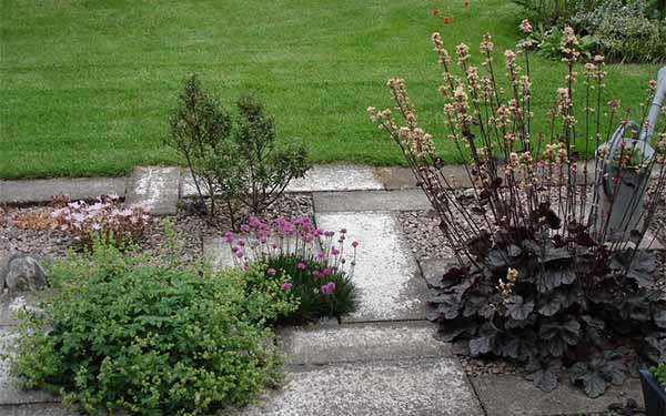 двор частного дома фото дорожки