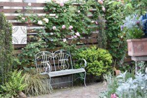 красивый двор частного дома фото забора