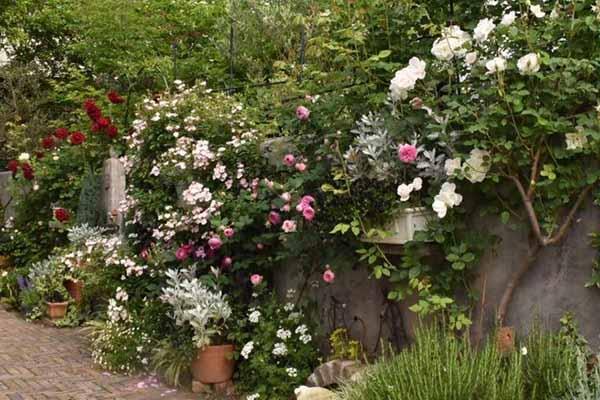 красивый двор частного дома забор