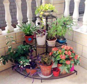 Угловая подставка для комнатных цветов